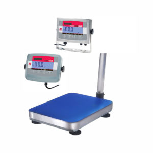 Ohaus T31P or T32XW including Bench Scale